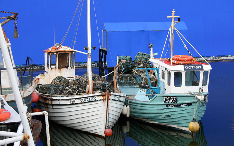 Small-Lobster-boats-Used-in-Dark-Shadows